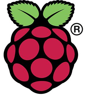 Logo de Raspberry