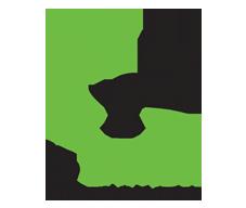 logo d'ipvanish