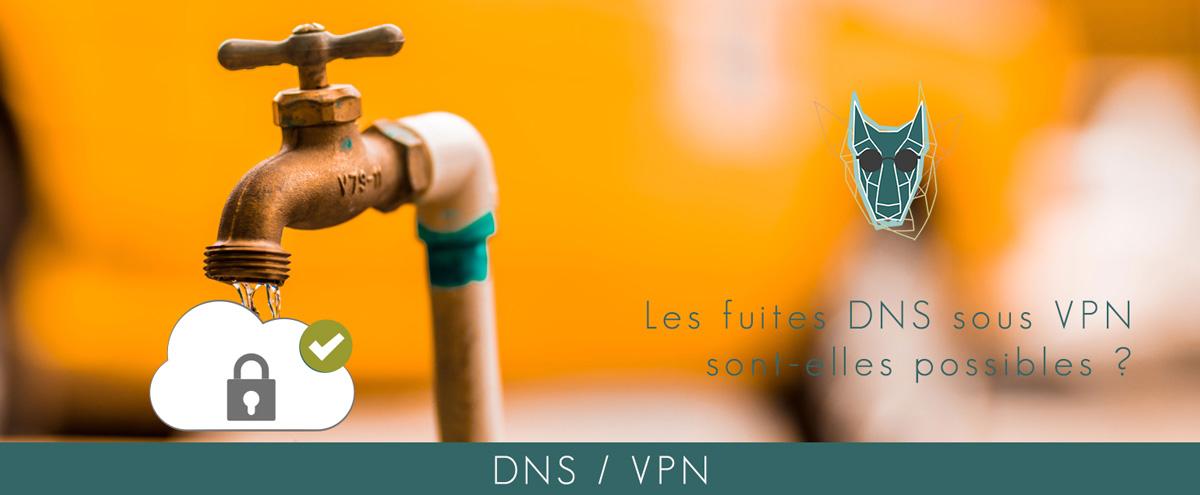 Illustration DNS VPN