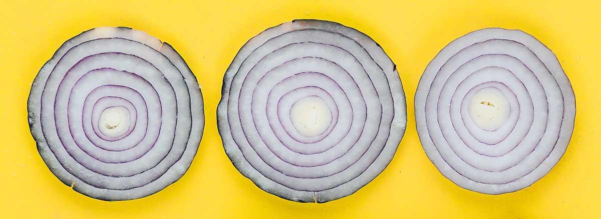 illsutration de tranches d'oignon : Tor