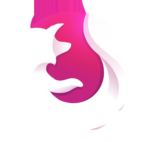 ALternatives à AdBlock : Firefox Focus