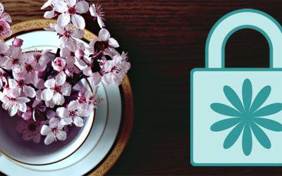 VPN : Promotions de printemps