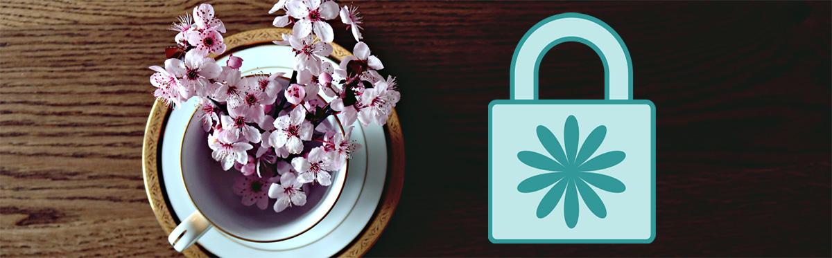 illustration : Promotion printemps 2021 VPN