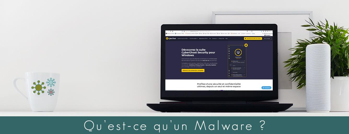 Illustration : Qu'est-ce qu'un malware