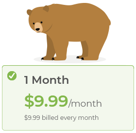 TunnelBear : tarif pour 1 mois